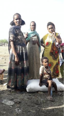IDPs in TIgray